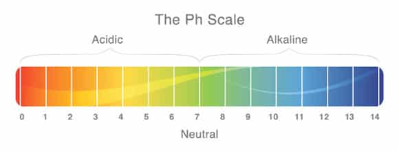 Aquarium PH Scale